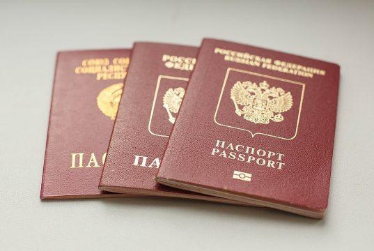 В России появится мобильное приложение вместо паспорта