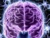 Можно ли загрузить мозг в компьютер